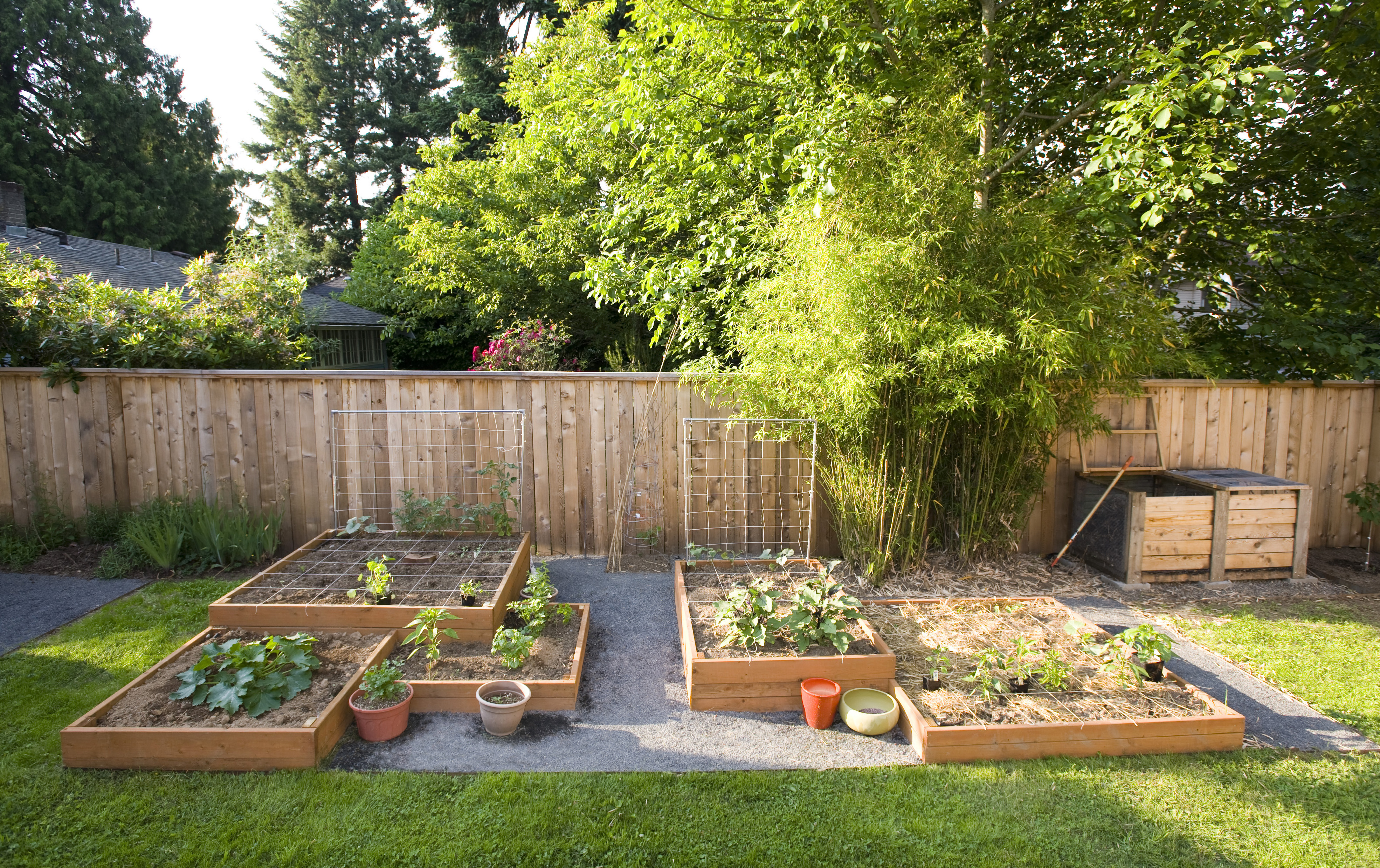 landscape design ideas | Take Root with Dennis\' 7 Dees